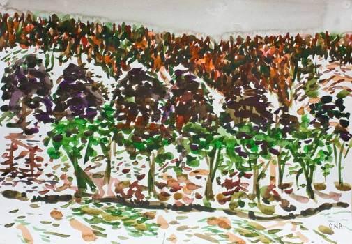 Snowy Hills of Cornholme