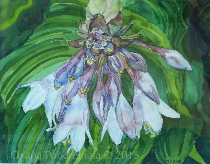 Lilac Apparition £50